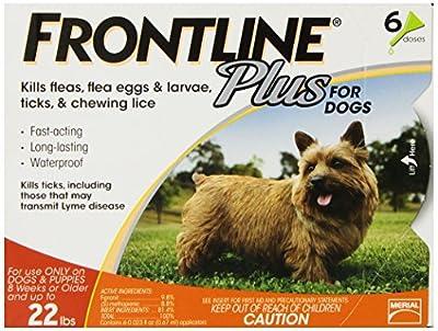 Frontline DFRSMPLUS6 6-Pack 11 to 22-Pound Plus Dog Flea and Tick Treatment, Small, Orange