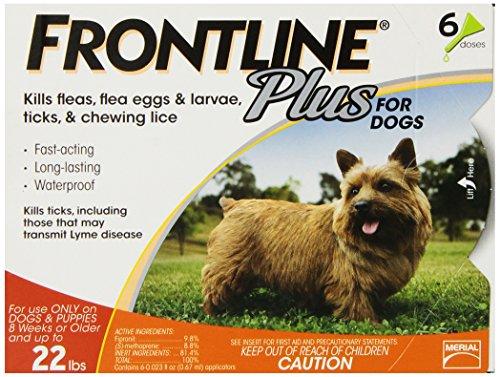 frontline-dfrsmplus6-6-pack-11-to-22-pound-plus-dog-flea-and-tick-treatment-small-orange