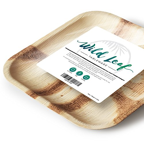 All Natural Palm Leaf Plates, 25 Pack / 10 Inch. Elegant and Eco Friendly Disposable Dinner Plates by Wild Leaf (Decorative Plastic Ware compare prices)