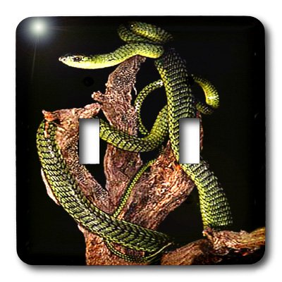 Snakes - Boomslang Snake - Light Switch Covers - double toggle switch