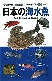 日本の海水魚 (増補改訂フィールドベスト図鑑)