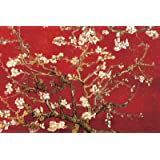 (24x36) Vincent van Gogh Almond Blossom - Red Poster