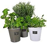 khevga Lot de 3 pots à herbes aromatiques en métal