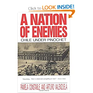 A Nation of Enemies: Chile Under Pinochet (Norton Paperback) by Pamela Constable and Arturo Valenzuela