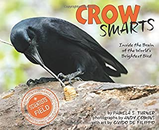 Book Cover: Crow Smarts: Inside the Brain of the World's Brightest Bird