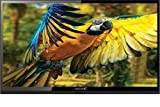 Videocon LEDTVIVC32F23A 32 Inch HD Ready LED TV