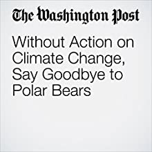 Without Action on Climate Change, Say Goodbye to Polar Bears Other by Darryl Fears Narrated by Sam Scholl
