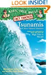Tsunamis and Other Natural Disasters:...