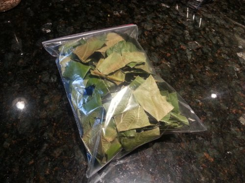 5 Oz Dried, Crushed Loquat Leaf Tea (Biwa Tea), Cleaned And Fur Removed