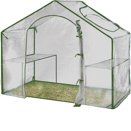 Extra Large 5x5ft Greenhouse Walk in with Window Plastic Cover &#038; Steel Frame + 2 Shelves