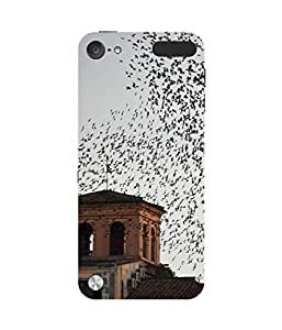 Bird Eye View Apple iPod Touch (5th Generation) Case