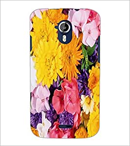 PrintDhaba Flowers D-2420 Back Case Cover for MICROMAX A116 CANVAS HD (Multi-Coloured)