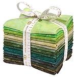 Lunn Studios Artisan Batiks Prisma Dyes Rainforest 15 Fat Quarters Robert Kaufman Fabrics FQ-832-15