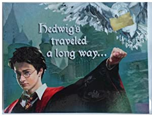 """Harry Potter 8 Party Invitations """"Hedwig Traveled a Long Way..."""""""