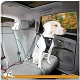 Kurgo Tru-Fit Crash Tested Dog Harness, Black, Large - Lifetime Warranty