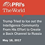 Trump Tried to Ice Out the Intelligence Community From His Effort to Create a Back Channel to Russia   Joyce Hackel