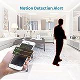 1080p-HD-Night-Vision-Kamera-Misafes-360-Grad-drehbarer-Fu-Mi-Cam-Wi-FiBaby-Haustier-Haus-berwachung2-Wege-Audio-App-fr-iPhone-iPad-AndroidzB-Samsung-HTC-LG-Sony-Google-Nexus