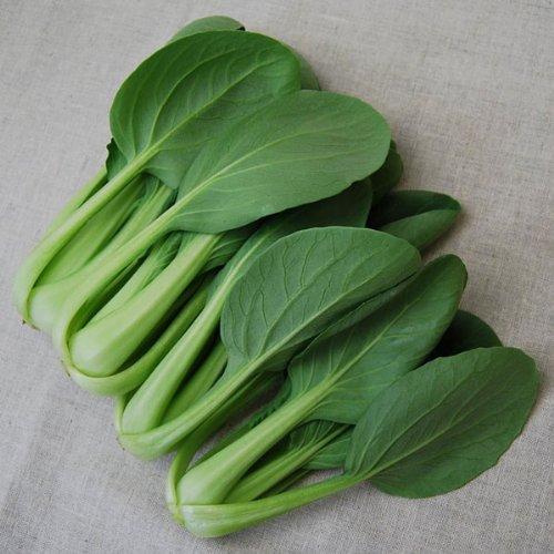 有機青梗菜(ちんげんさい)