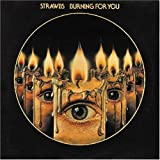 Burning for You by Strawbs (2003-12-08)