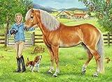 Ravensburger Spieleverlag 13663 - Mein Lieblingspferd - 100 Teile XXL, QR Code für die Gratis-App hergestellt von Ravensburger Spieleverlag