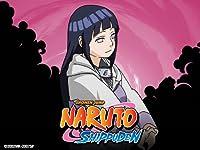 Naruto Shippuden Uncut 22 Seasons 2010