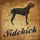 Sidekick by Grey, Jace - Fine Art Print on PAPER : 24.75 x 24.75 Inches