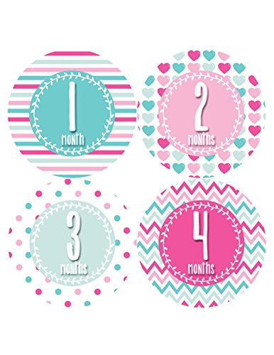 Months in Motion 393 Monthly Baby Stickers Baby Girl Months 1-12 Milestone