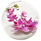 Wall Mountable Clear Glass Globe Ball Flower Vase Plant Terrarium w/ Artificial Purple Orchids & Sand