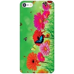 Apple iPhone 5C Back Cover - Bird Fly Designer Cases