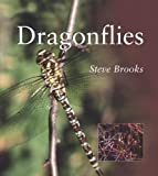 Dragonflies (Smithsonian's Natural World Series)
