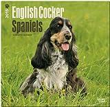 BrownTrout Publishers Ltd. English Cocker Spaniels 2015 Wall Calendar