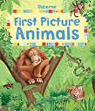 Felicity Brooks First Picture Animals (Usborne First Picture Books)
