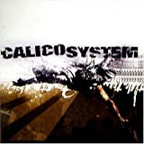 Duplicated Memory by Calico System
