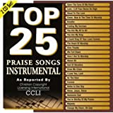 Top 25 Praise Songs: Instrumental [2 CD]