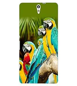 ColourCraft Lovely Parrots Design Back Case Cover for SONY XPERIA C5 E5553 / E5506