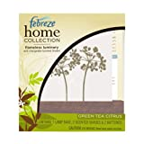 Febreze Home Collections Green Tea Citrus Flameless Luminary Starter Kit, 1 Kit Box ~ Febreze