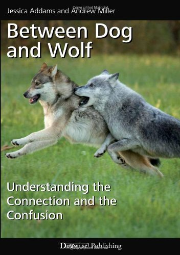 Between Dog and Wolf: Understanding the Connection and the Confusion: Jessica Addams, Andrew Miller: 9781617810558: Amazon.com: Books