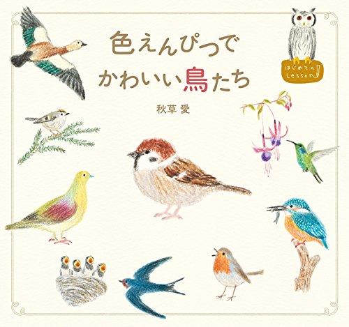 色えんぴつでかわいい鳥たち (はじめてのLesson)