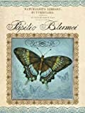 Papilio Blumei by Gorham, Gregory- Fine Art Print on CANVAS : 24 x 32 Inches