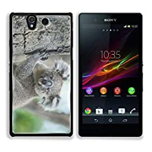buy Msd Sony Xperia Z Aluminum Plate Bumper Snap Case Australian Koala Sit On Tree Sydney Nsw Australia Exotic Iconic Aussie Mammal Animal With Infant In Lush Jungle Rainforest 35303003