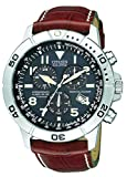Citizen Men's Eco-Drive Perpetual Calendar Chronograph Watch #BL5250-02L