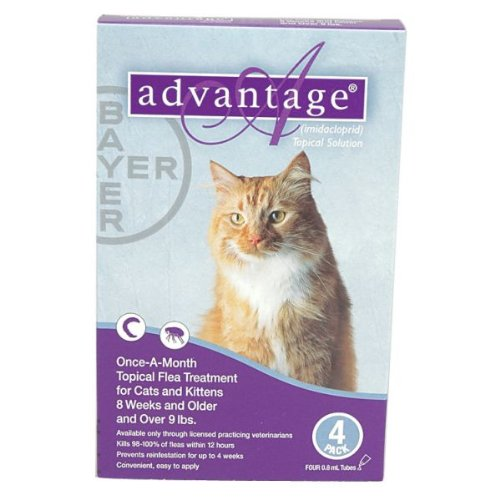 4 Month Advantage Flea Control Purple: For cats over 9 lbs.4 Month Advantage Flea Control Purple: For cats over 9 lbs.