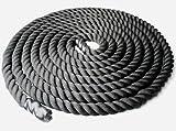 トレーニングギア ジムロープ 体幹を鍛える! スイングロープ トレーニングロープ 筋トレ 夢の肉体 アスリート