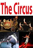 img - for The Circus: a picture book for kids book / textbook / text book