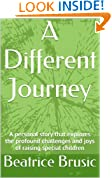 A Different Journey: A personal story that explores the profound challenges and joys of raising special children