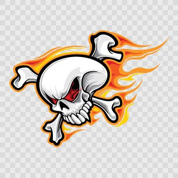 Skull With Flames... Color print (18 X 13.2 inch) ZE484