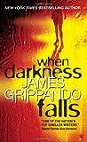 WHEN DARKNESS FALLS (0060831146) by Grippando, James