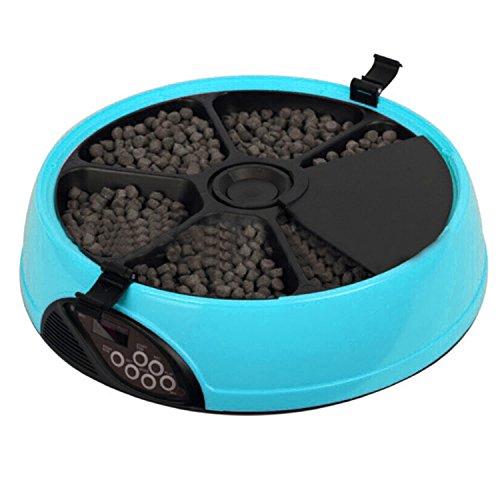 6 repas plateau minuterie Programmable automatique chien chat Feeder eau bac bols Blue