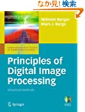 Principles of Digital Image Processing: Advanced Methods (Undergraduate Topics in Computer Science)