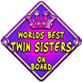 JEWEL TWIN SISTERS on board non personalised baby car sign from Just The Occasion
